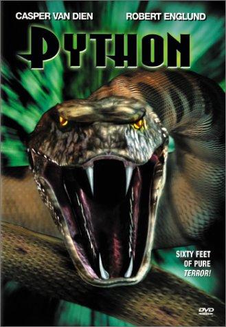 python王朝